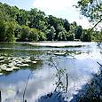 Cherington Pond