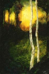 Brich_trees